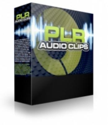 Product picture PLR Audio Clips 2 PLR