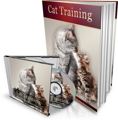 Product picture Cat Training eBook & Audio MRR